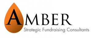 amber-consulting